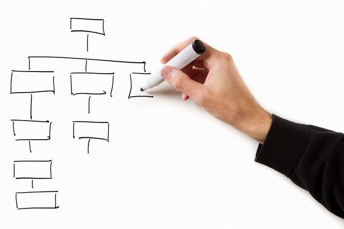 Tipos de organización y organigramas