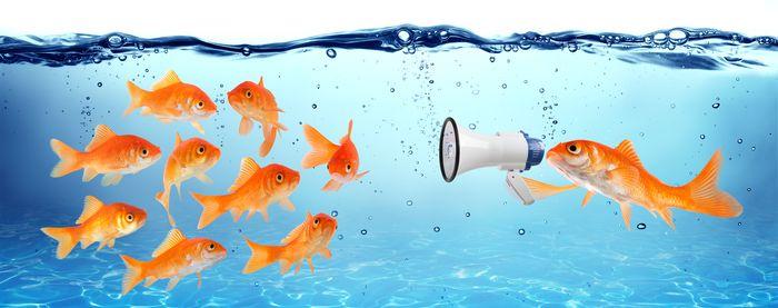 La comunicación, base de toda relación empresarial y personal